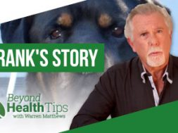 Frank: a dog's journey to health